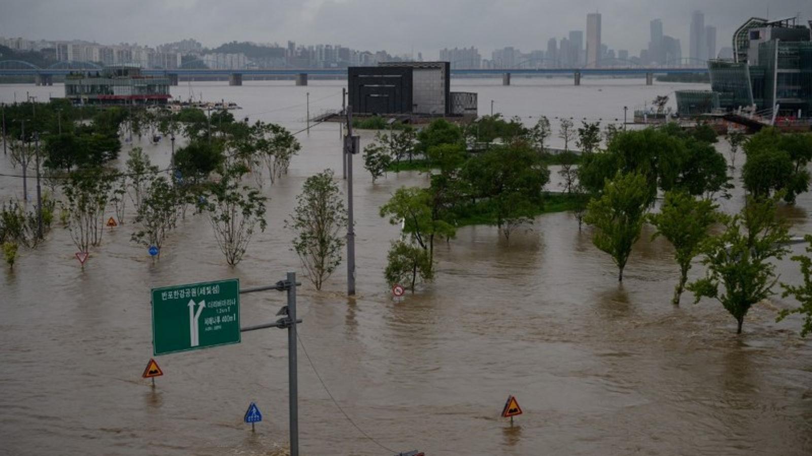 Thủ tướng gửi điện thăm hỏi tình hình mưa lũ ở Hàn Quốc
