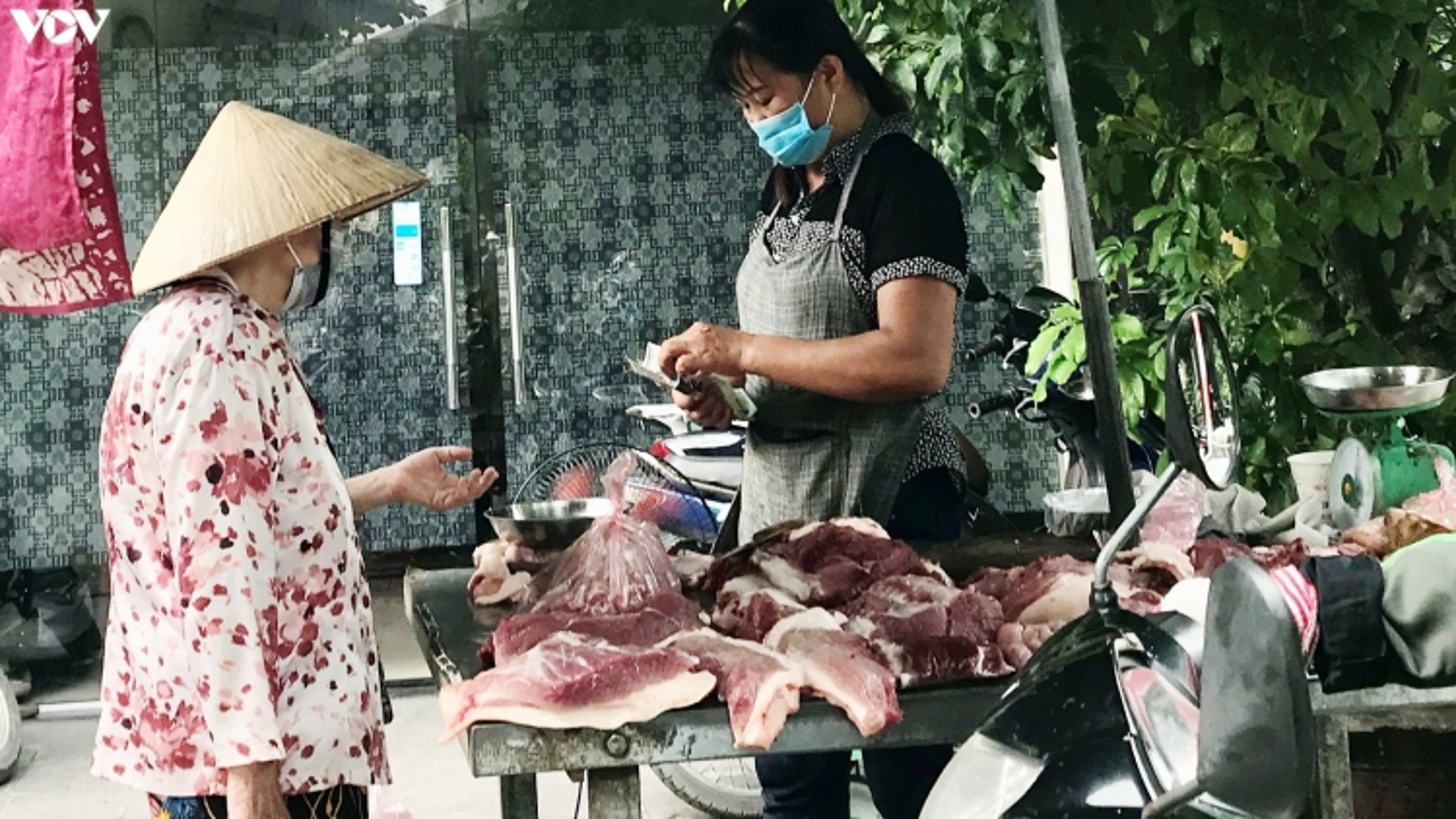 Lợn nhập khẩu đổ về khiến giá thịt trong nước giảm mạnh