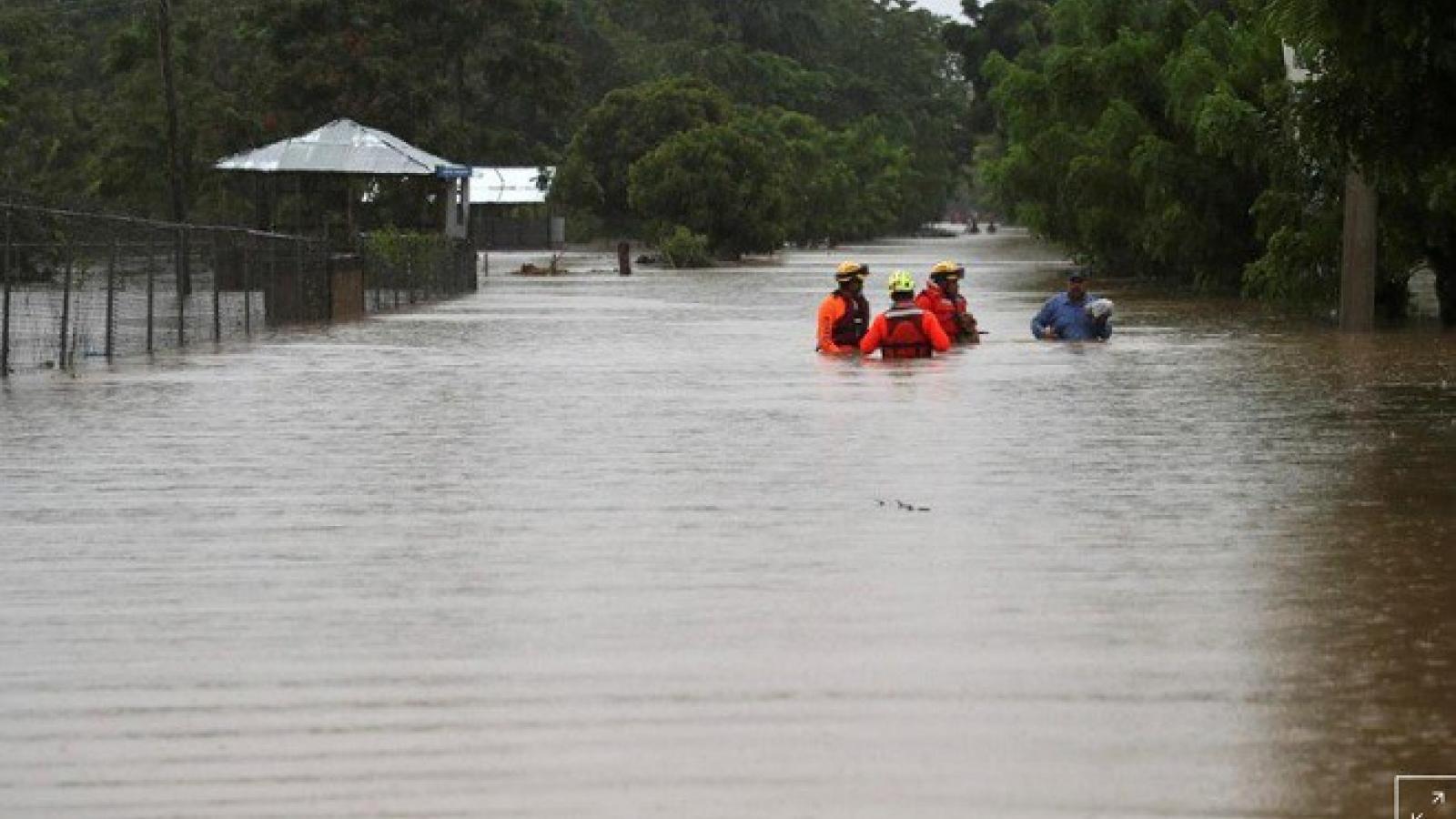 500.000 người Mỹ đã được lệnh sơ tán khi cơn bão Laura tăng cấp