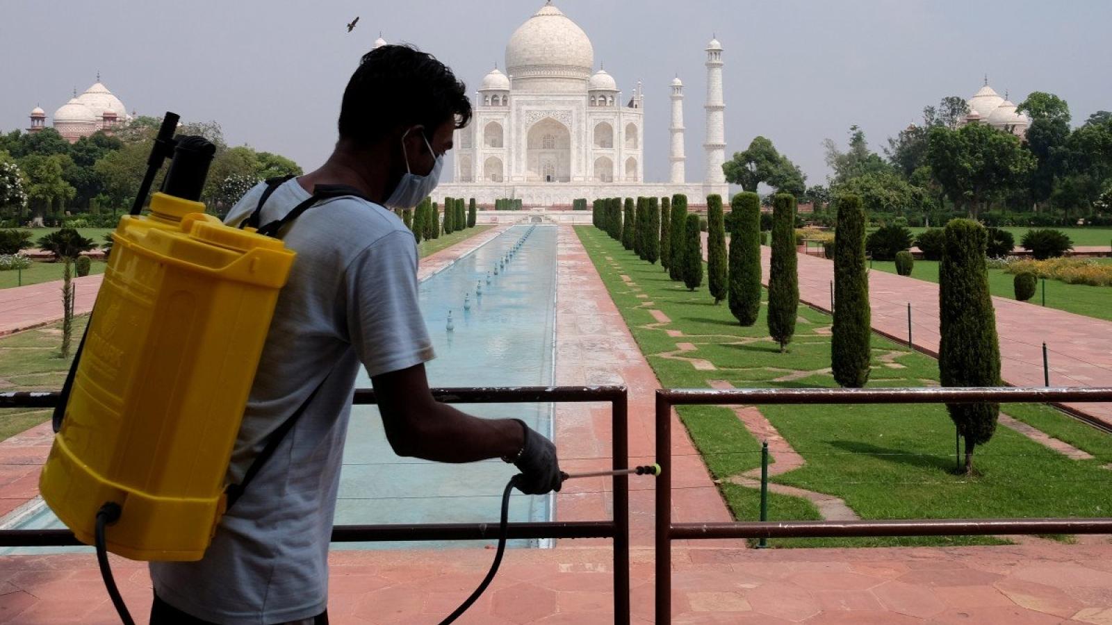 Đền Taj Mahal mở cửa trở lại: vắng vẻ lạ lẫm