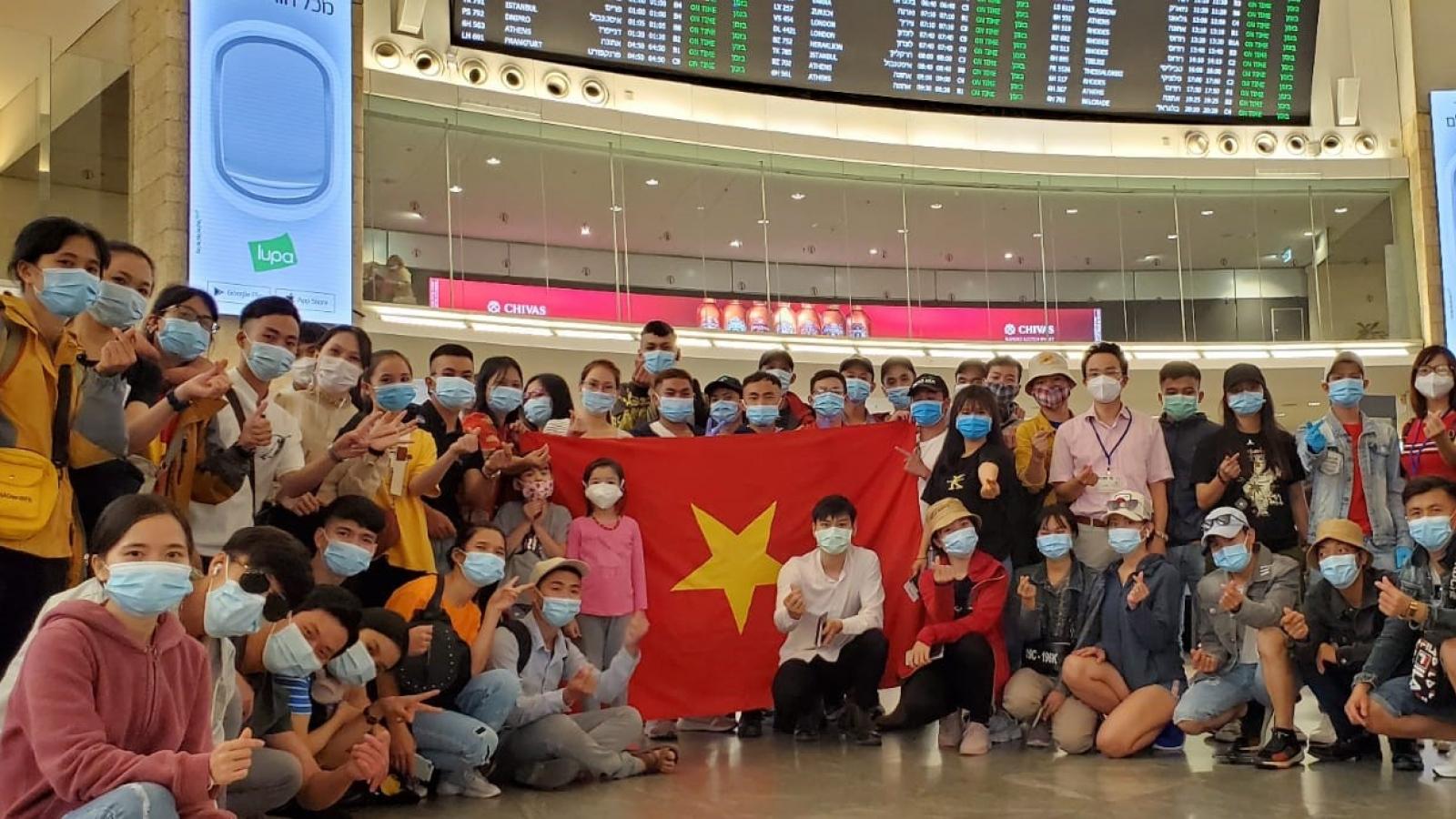 Đưa 340 công dân Việt Nam từ Israel về nước
