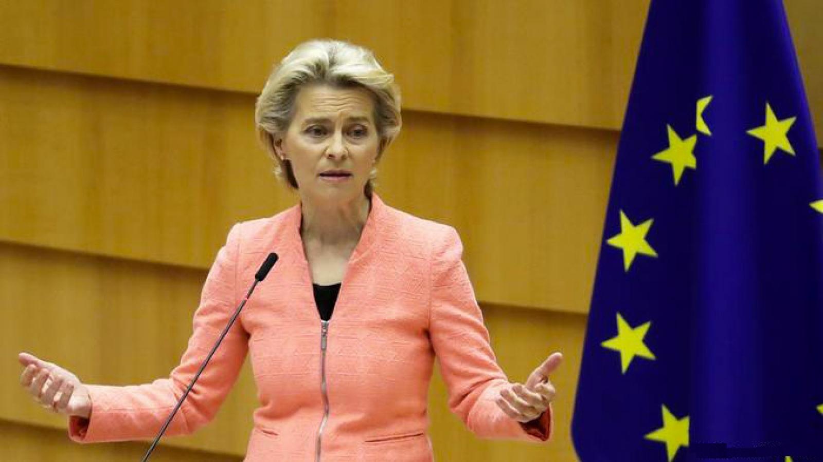 Định hướng hành động của EU tập trung vào kế hoạch phục hồi sau Covid-19