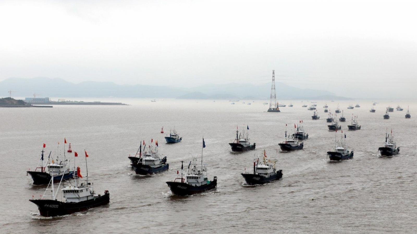 Căng thẳng Biển Hoa Đông, Nhật Bản thắt chặt liên minh với Mỹ chống Trung Quốc?
