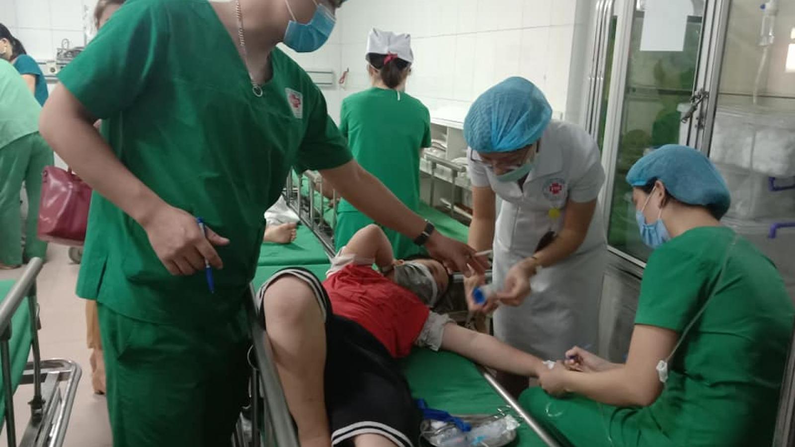 Bị ong đốt, 16 học sinh tại thành phố Vinh nhập viện