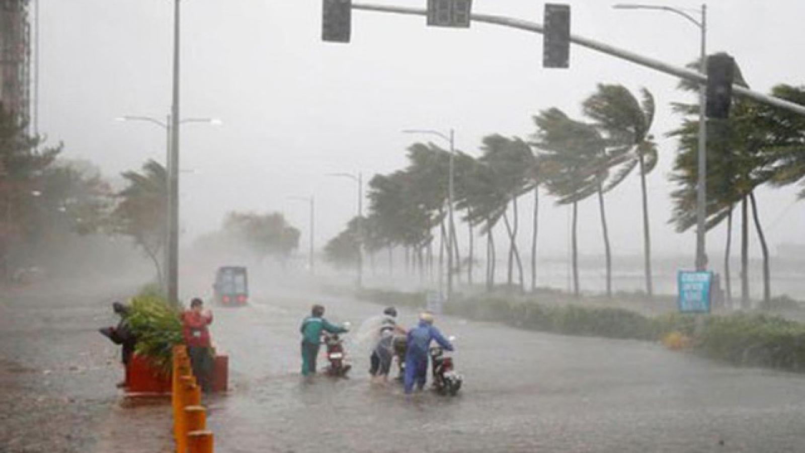 Áp thấp nhiệt đớicó khả năng mạnh lên thành bão trên biển Đông, khẩn trương ứng phó