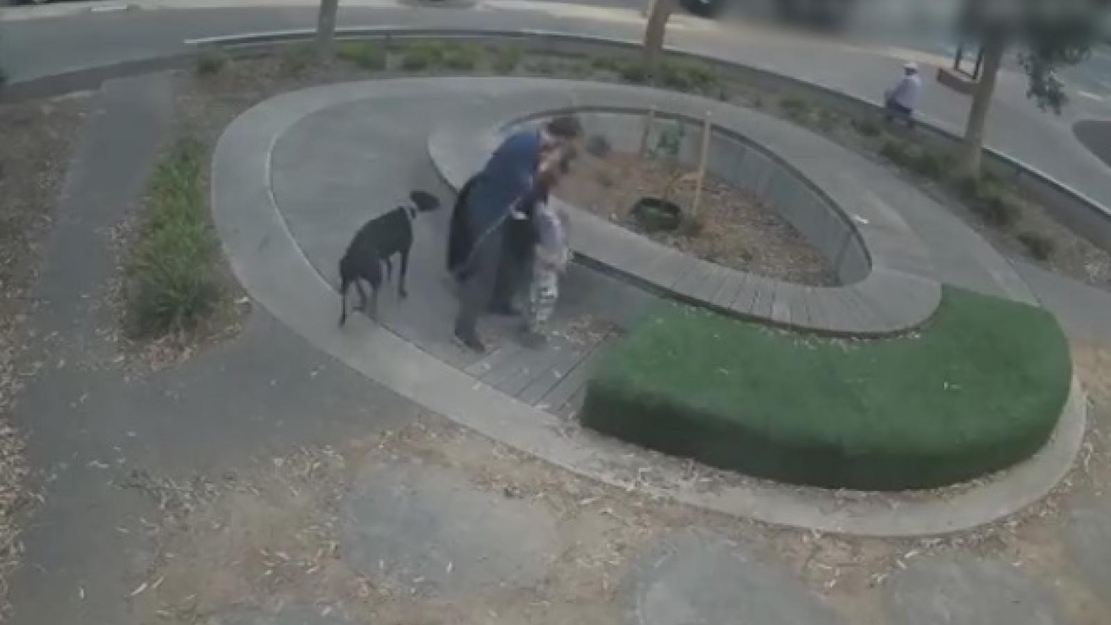 Video: Khoảnh khắc gã say dùng vũ lực để bắt cóc bé trai