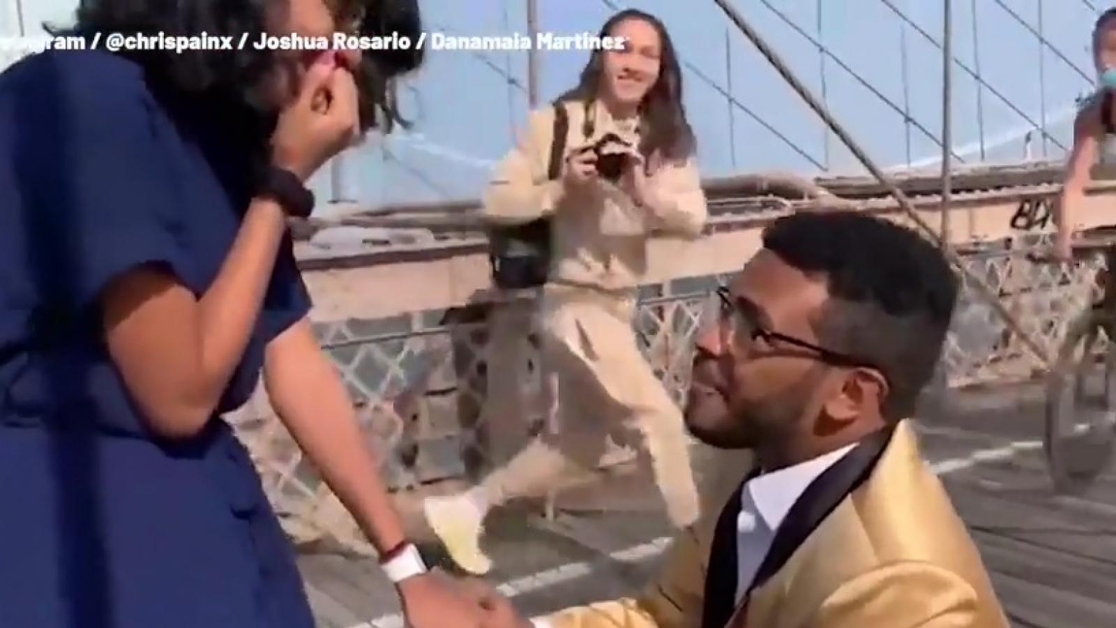 Video: Bất ngờ với màn cầu hôn trên cầu treo Brooklyn (Mỹ) nổi tiếng
