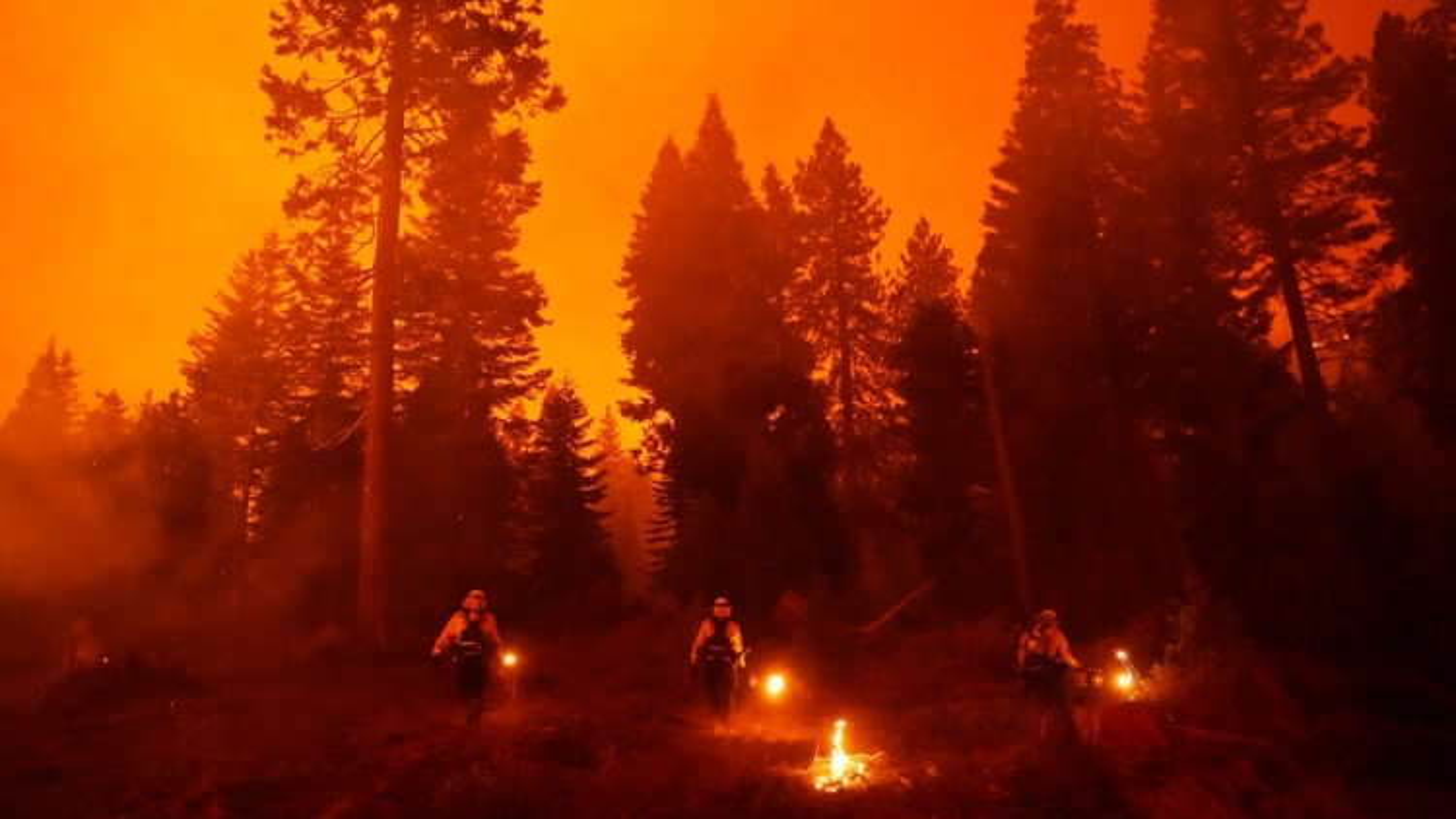 Cháy rừng tại California khiến ít nhất 3 người thiệt mạng