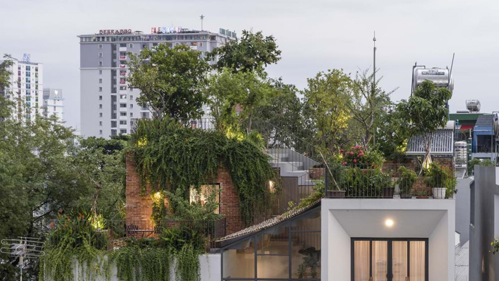 Ngôi nhà Sài Gòn có công viên trên mái