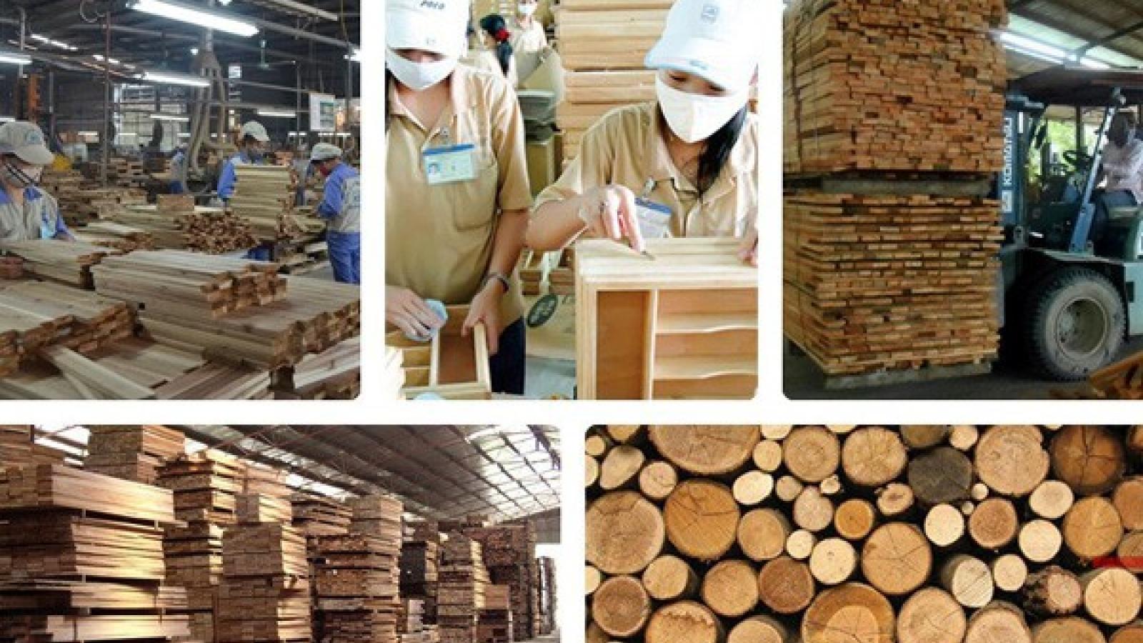 Ngành gỗ và lâm sản tái cơ cấu ứng phó với tình hình mới