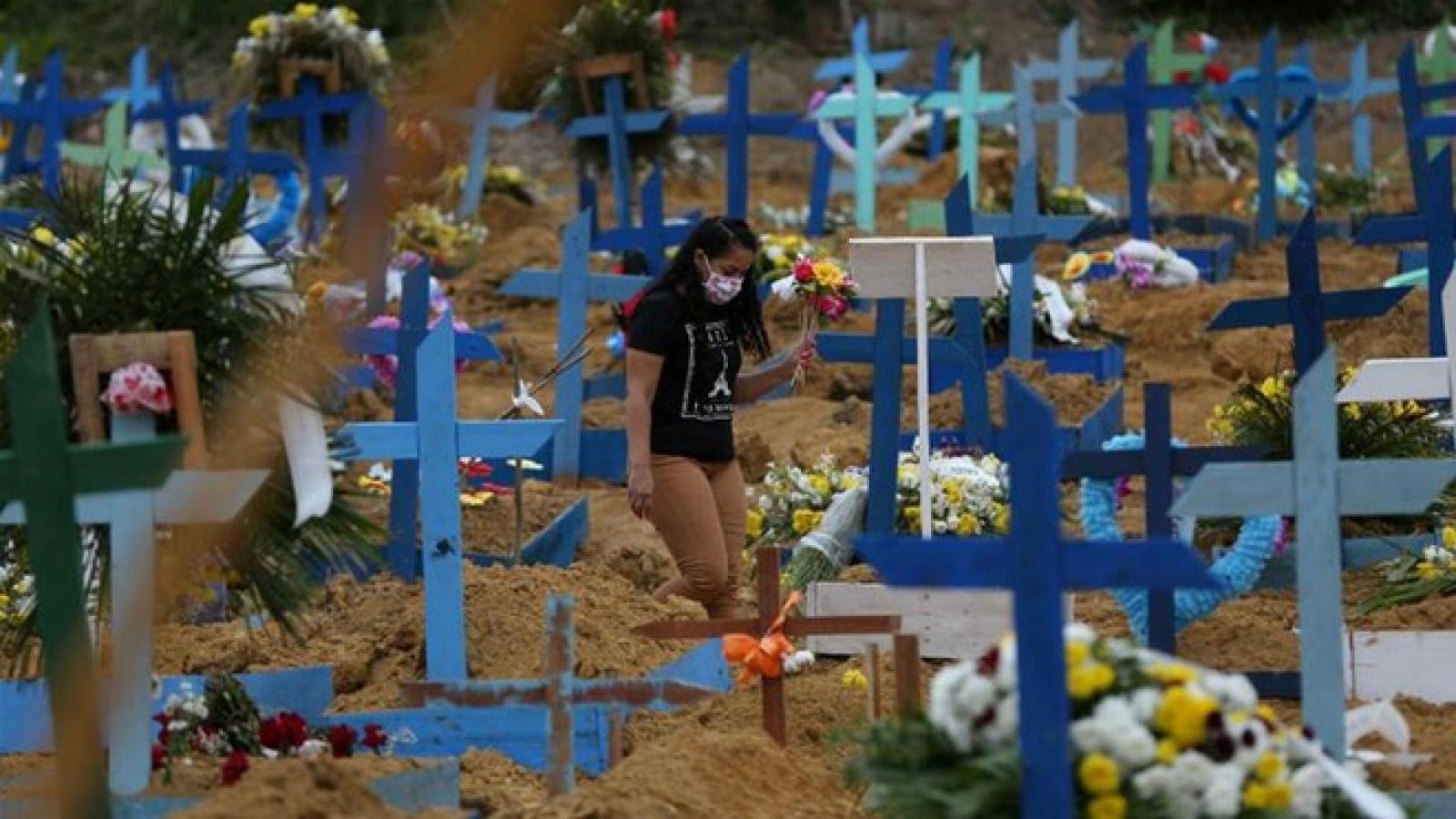 Cập nhật Covid-19: Gần 29 triệu ca mắc và 923.730 ca tử vong trên thế giới