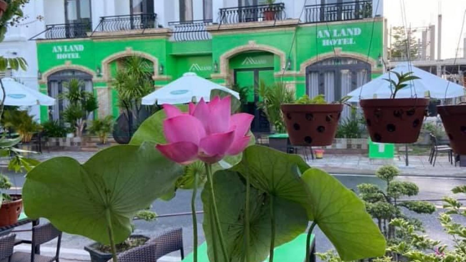 An Land Hotel - nơi cảm xúc giao hòa