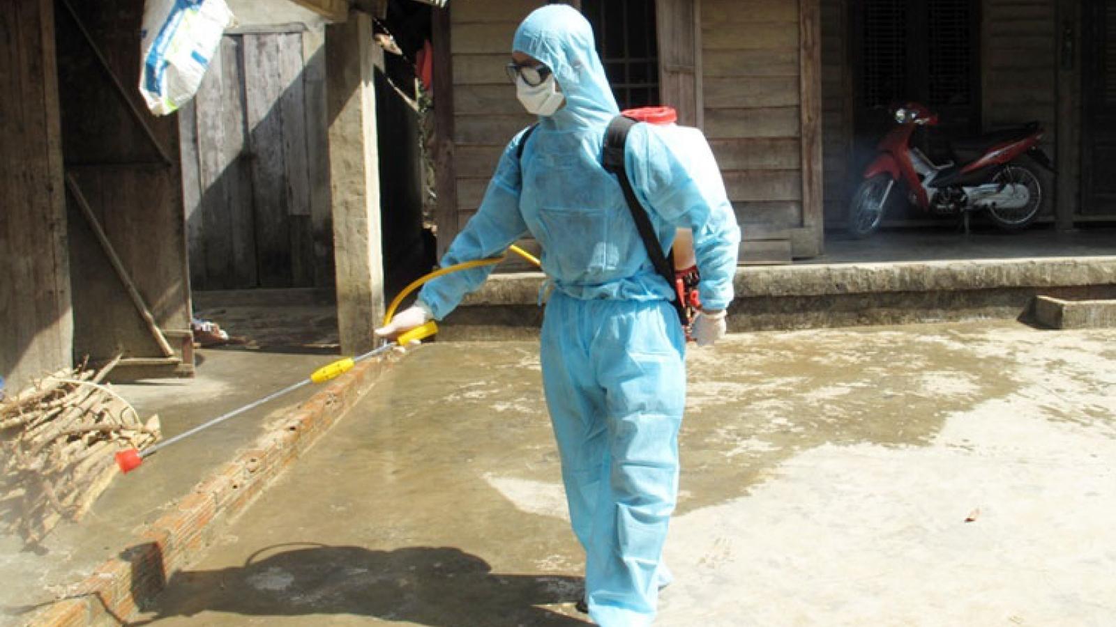 Bệnh sốt xuất huyết gia tăng tại Lâm Đồng
