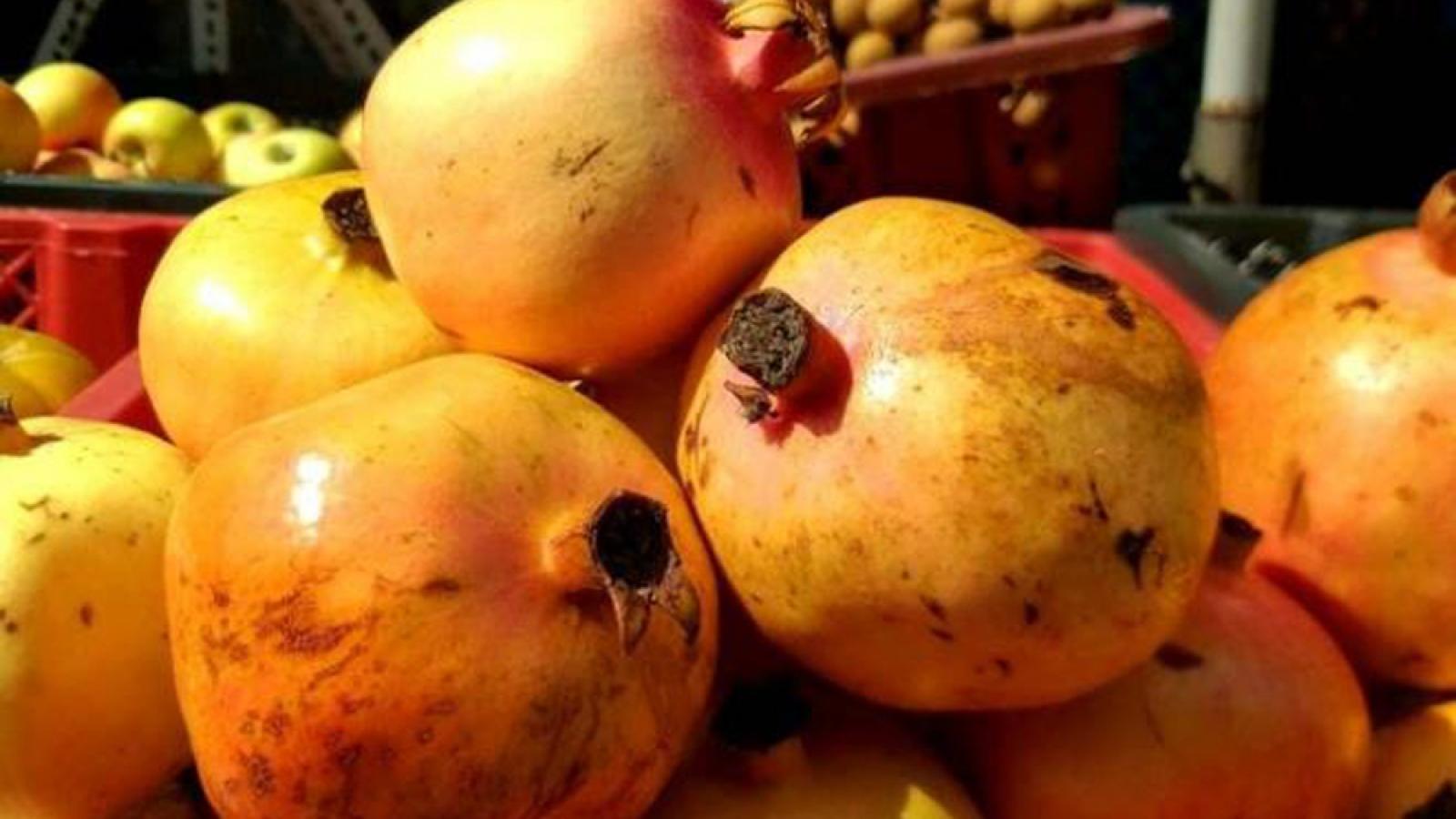 Nhiều loại trái cây ngoại đắt đỏ đổ vào Việt Nam