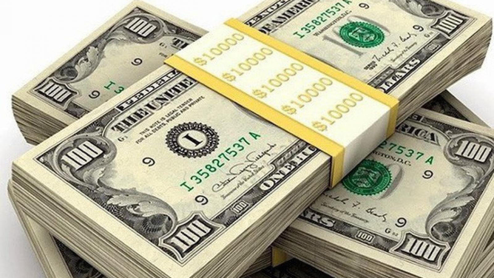 Dự trữ ngoại hối có thể đạt mức 100 tỉ USD vào cuối năm nay