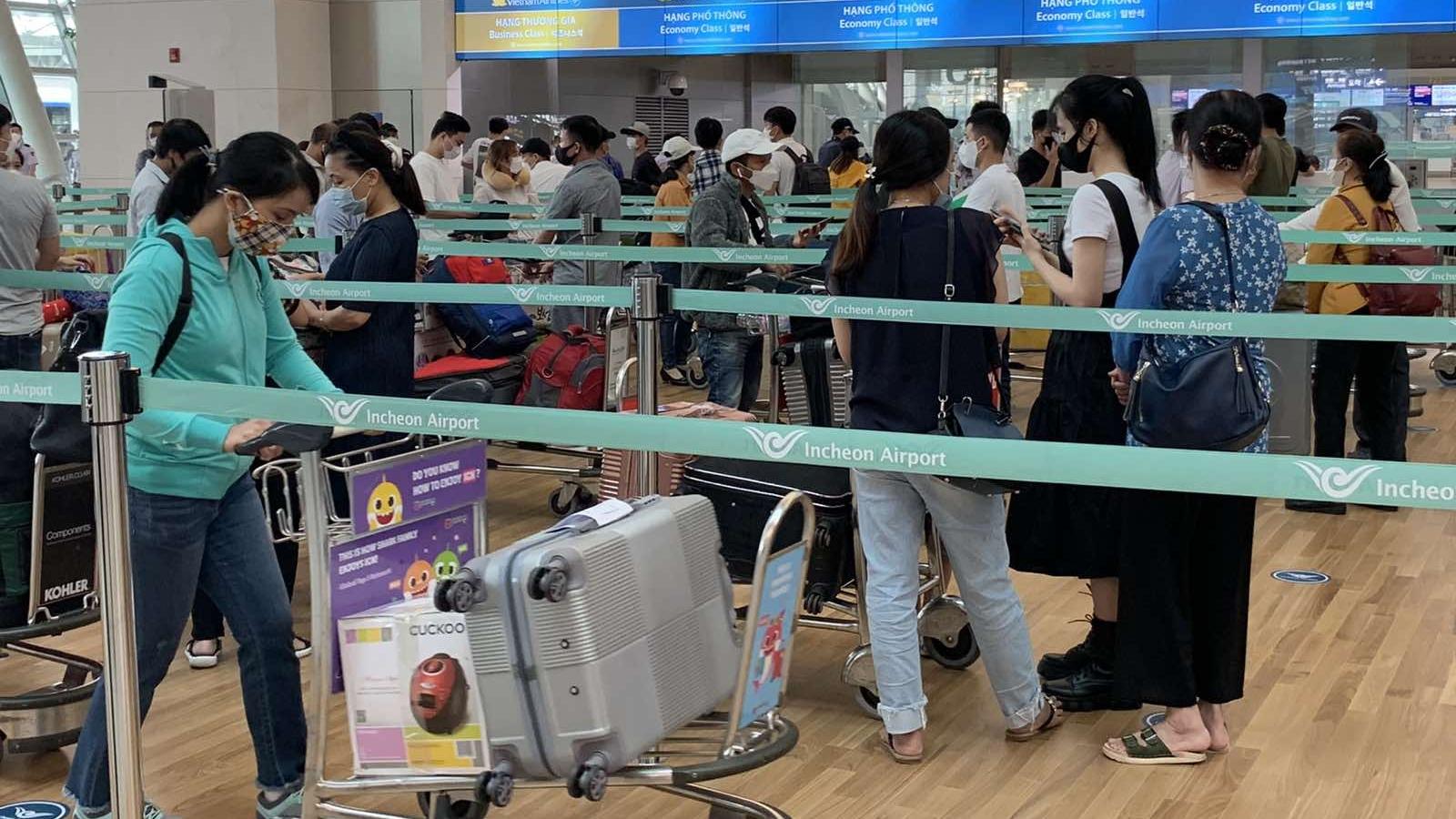 2 chuyến bay đưa gần 380 người Việt Nam về từ Hàn Quốc hạ cánh ở Cam Ranh