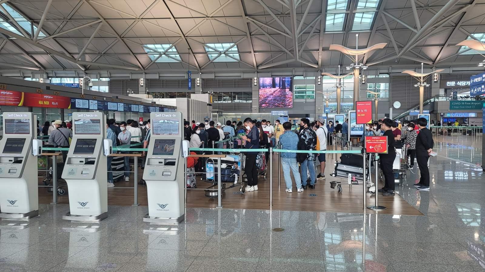 Hơn 250 công dân Việt Nam từ Hàn Quốc trở về nước an toàn