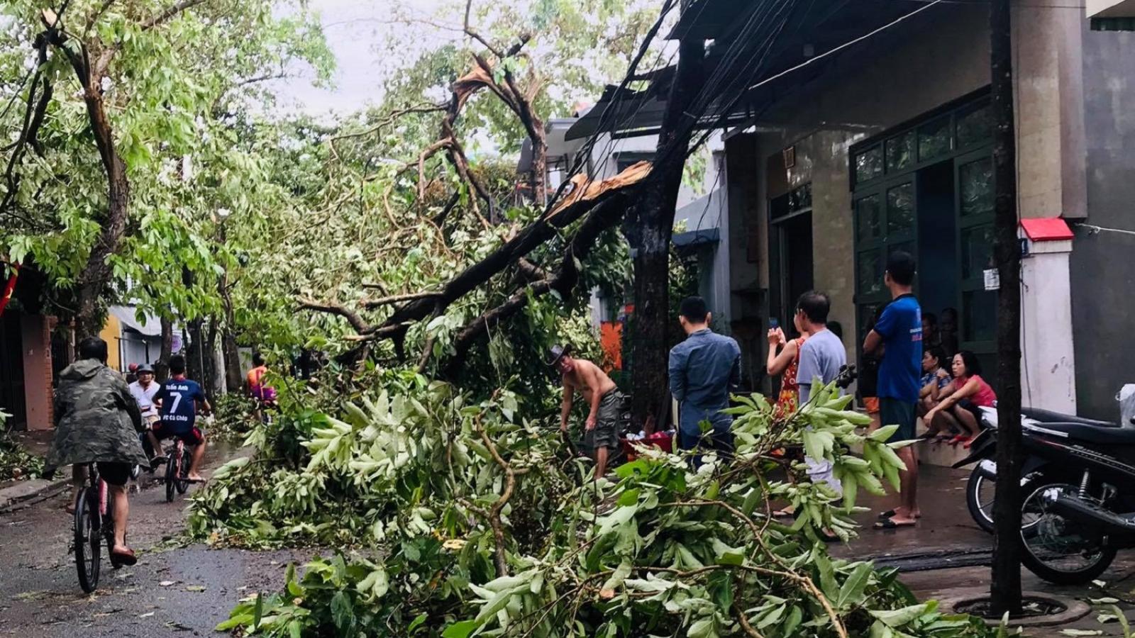 Một người chết, 95 người bị thương do ảnh hưởng của bão số 5