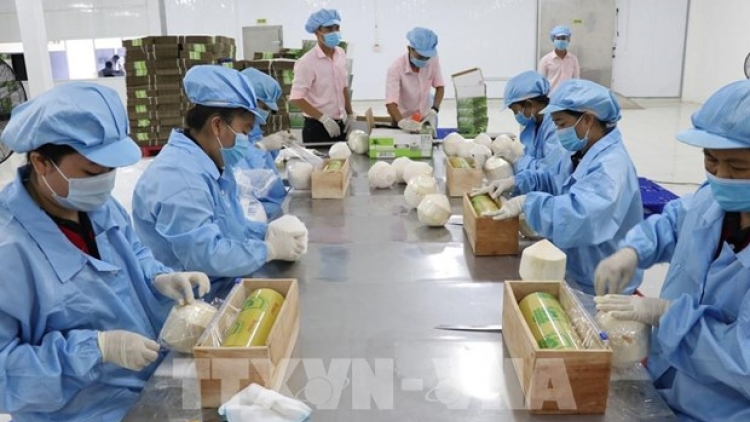 EVFTA brings myriad opportunities for Vietnam exporters: official