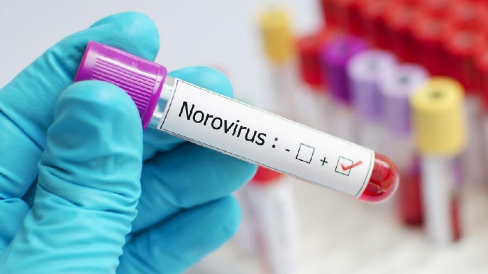 Trung Quốc: Hơn 70 sinh viên nghi nhiễm norovirus