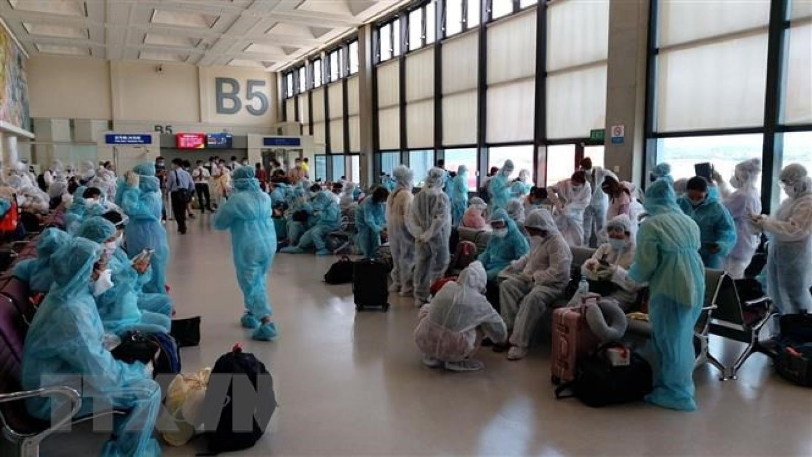 Việt Nam đưa 240 công dân từ Singapore về nước