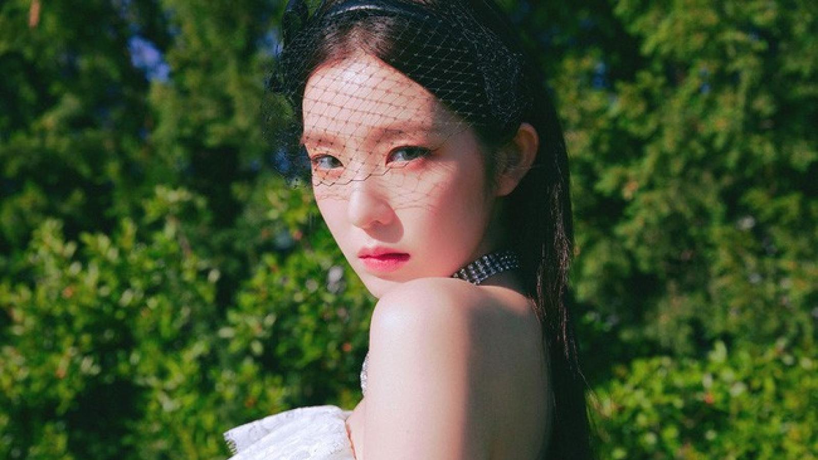 """""""Nữ thần"""" Irene (Red Velvet) thừa nhận xúc phạm biên tập viên thời trang nổi tiếng"""