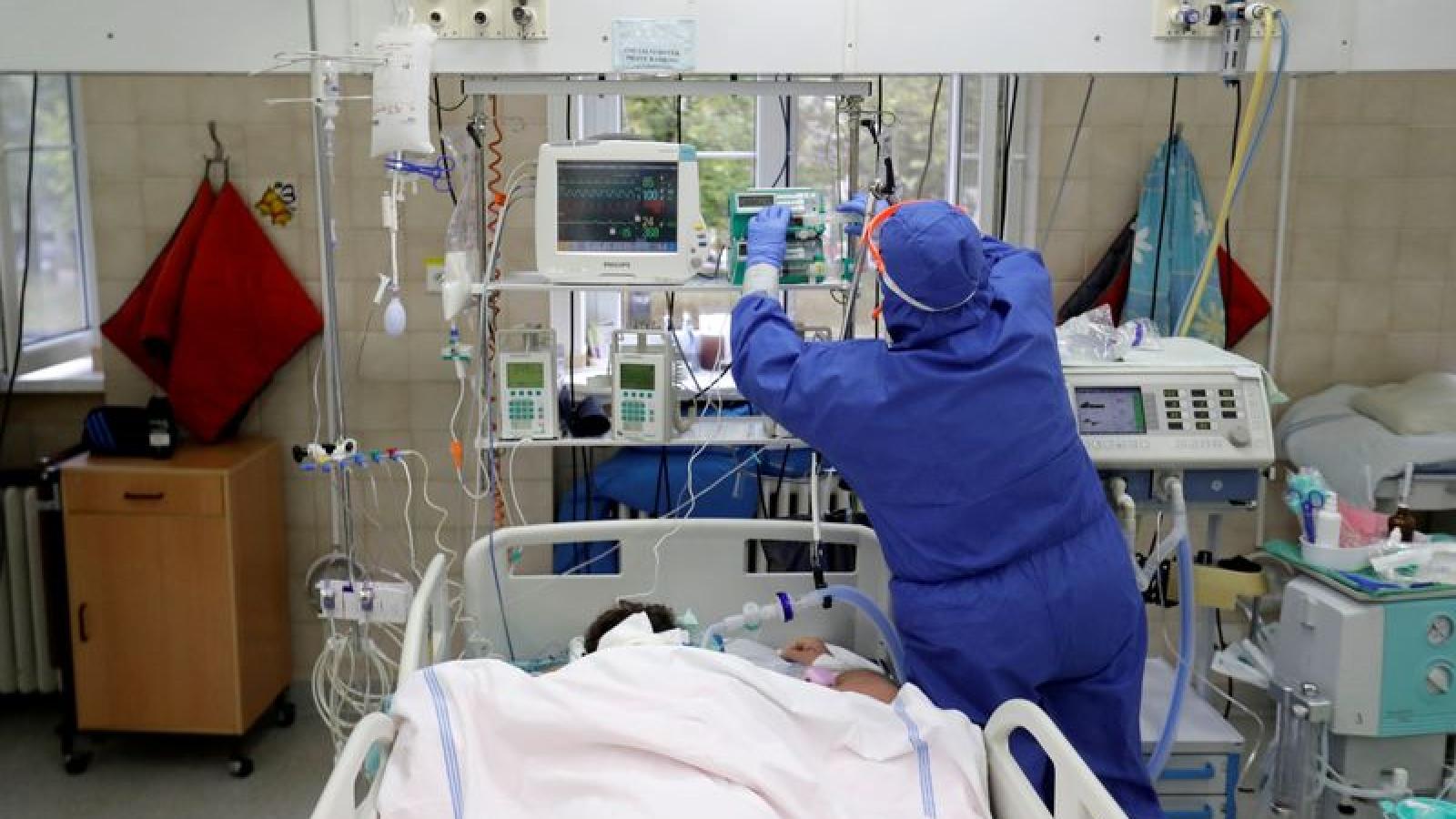 Cộng hòa Séc xây dựng bệnh viện dã chiến để chống dịch Covid-19