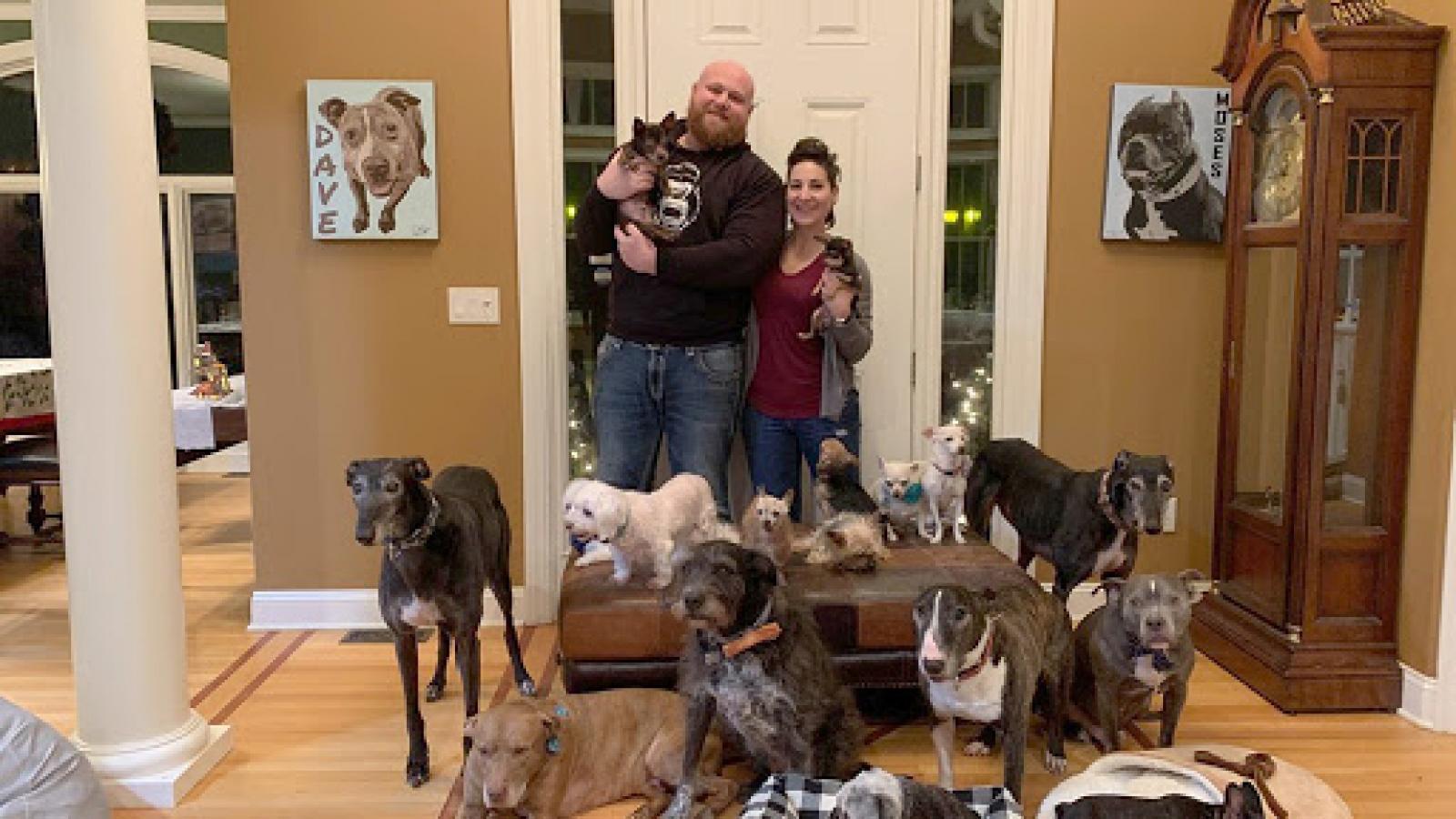 Cặp vợ chồng nuôi hơn 20 chú chó khuyết tật trong nhà
