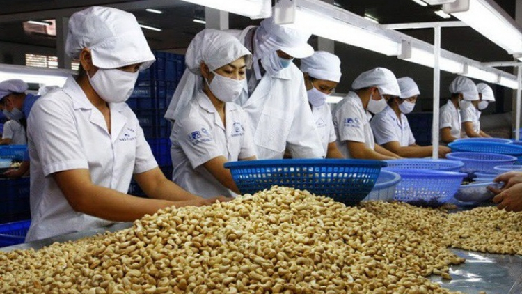 Huge trade surplus for agro-forestry-aquatic sector
