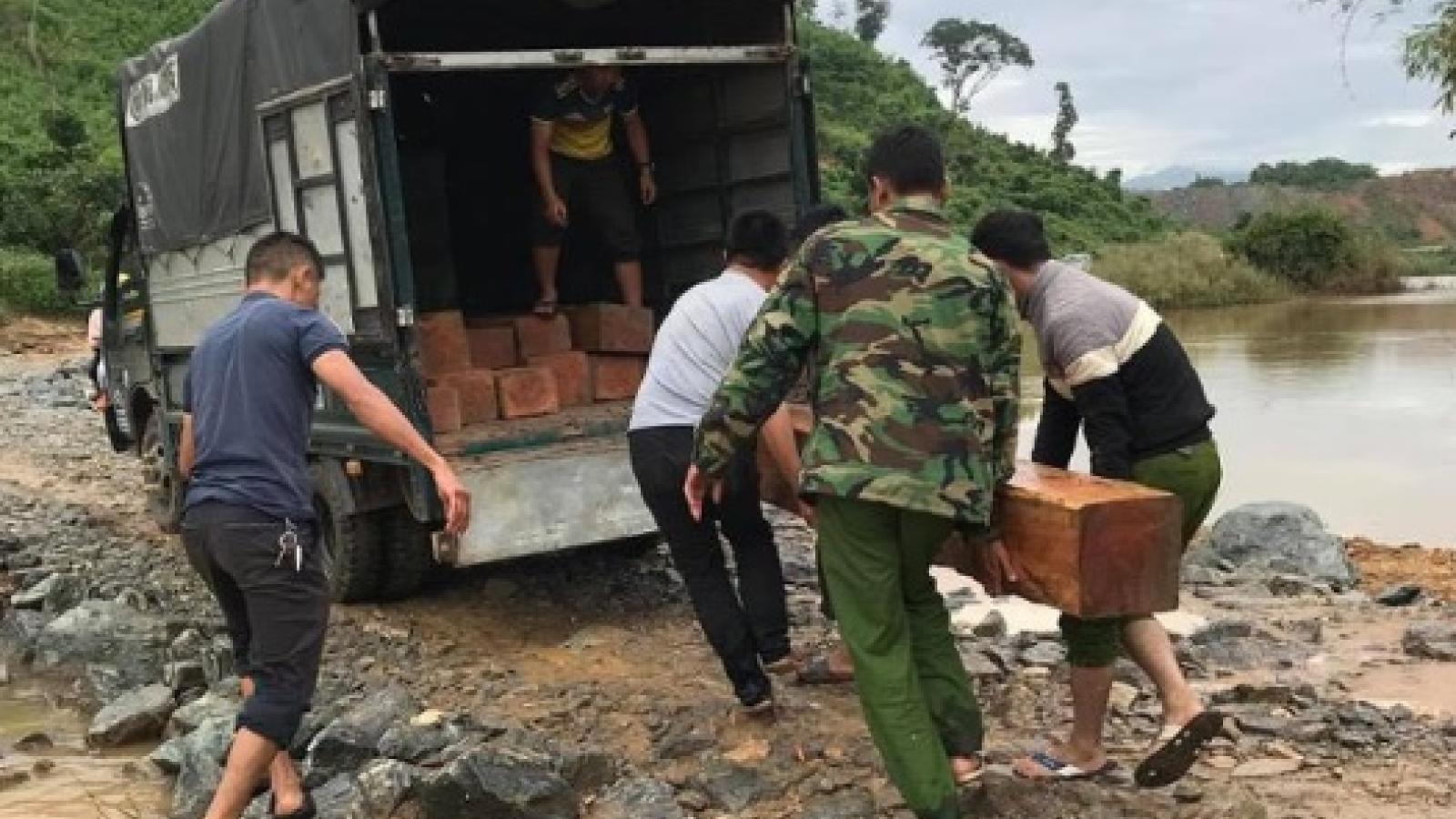 Phát hiện bãi tập kết gỗ trái phép với số lượng lớn ở Đắk Lắk
