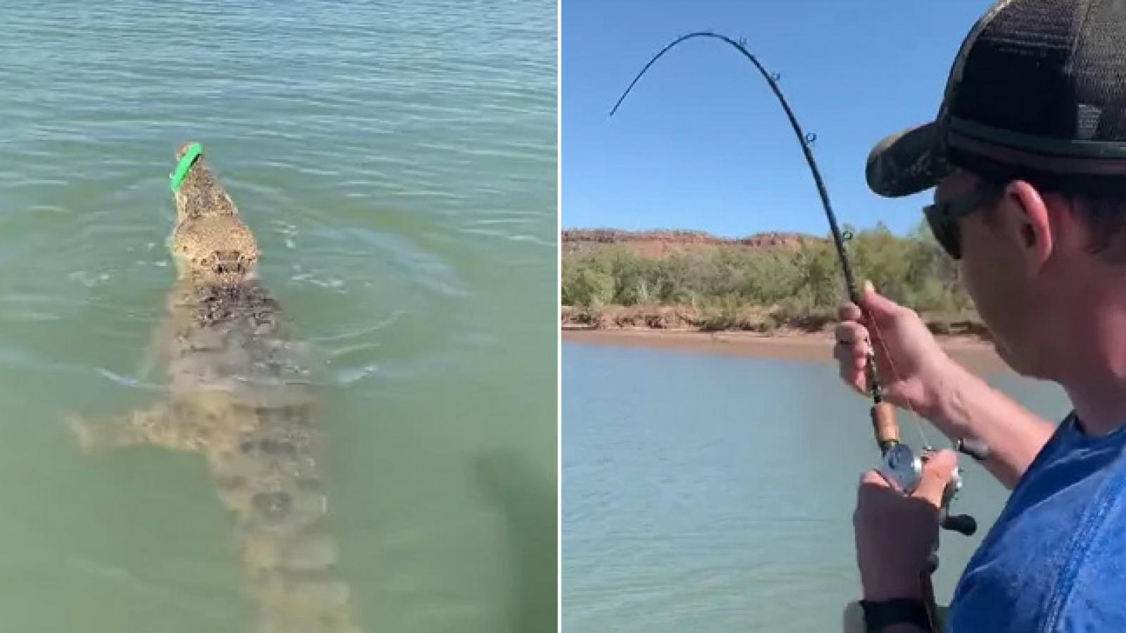 Video: Người câu cá vô tình câu trúng... cá sấu