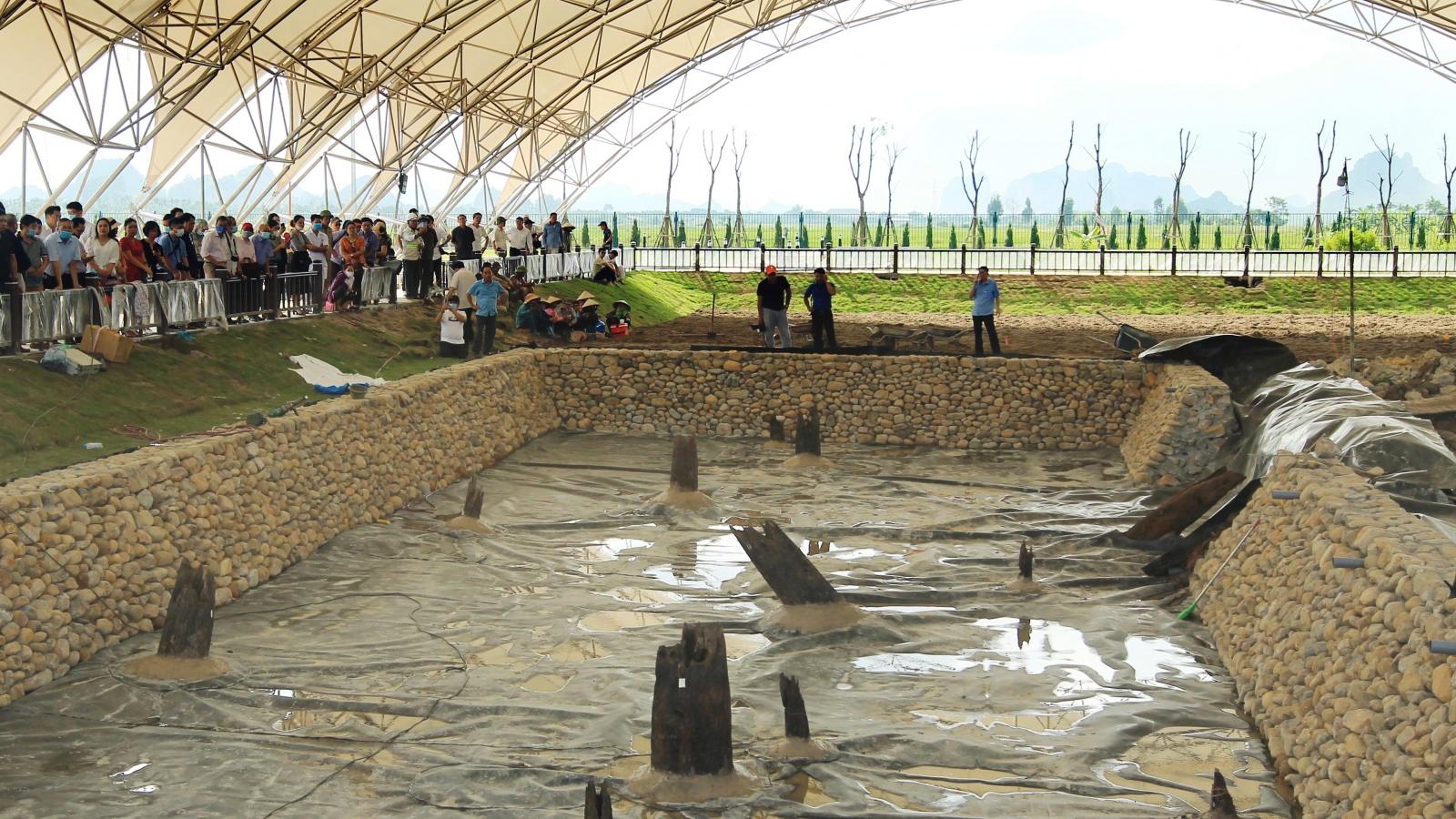 Bãi cọc cổ tại Hải Phòng: Cần thêm những nghiên cứu đa ngành, liên ngành