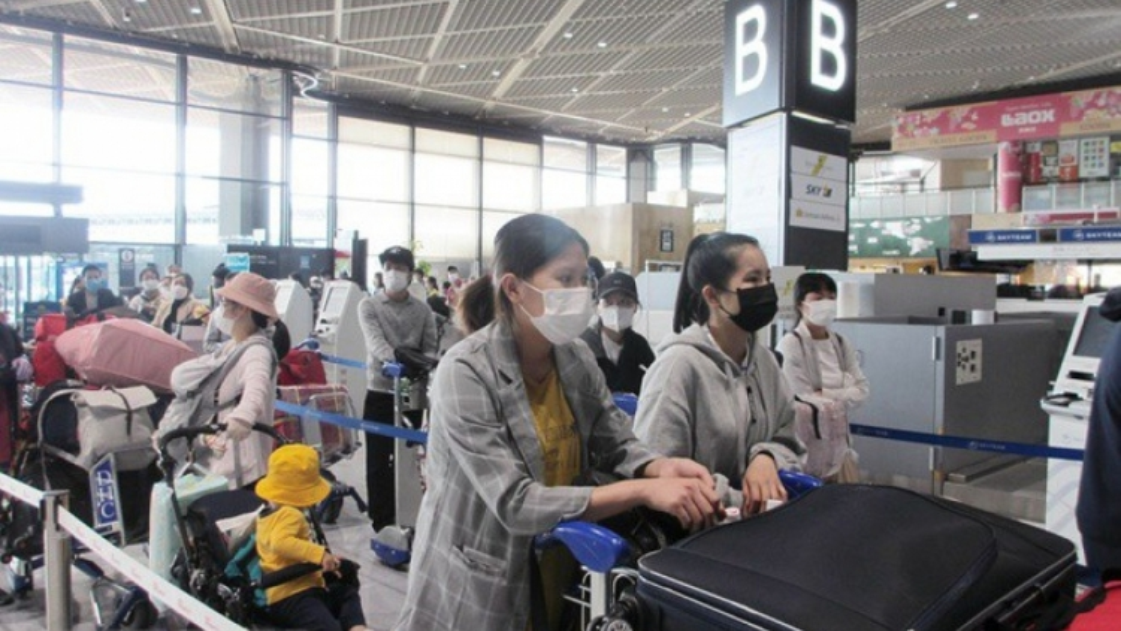 Hơn 220 công dân Việt Nam từ Nhật Bản về nước an toàn
