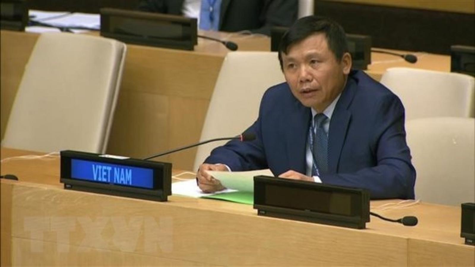 Vietnam calls on stakeholders to work for Haiti's future