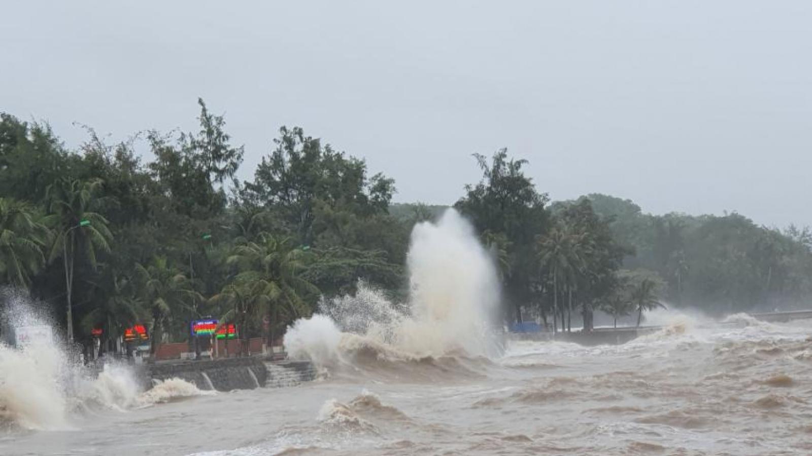 Các tỉnh Đông Bắc ứng phó với bão số 7