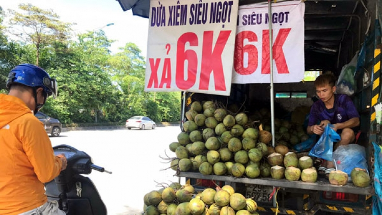 Dừa giá rẻ bán đầy đường có nguồn gốc từ đâu?