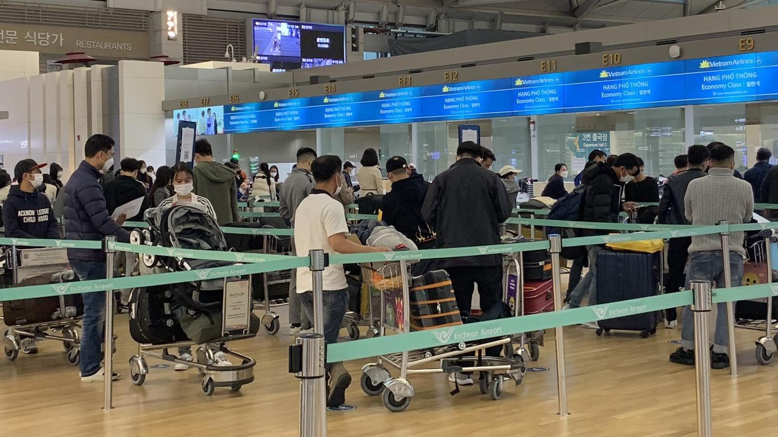 Đưa gần 450 công dân Việt Nam từ Hàn Quốc về nước an toàn