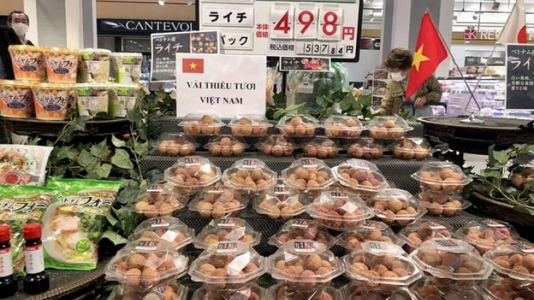 Japan to import US$20 billion worth of Vietnamese goods in 2020