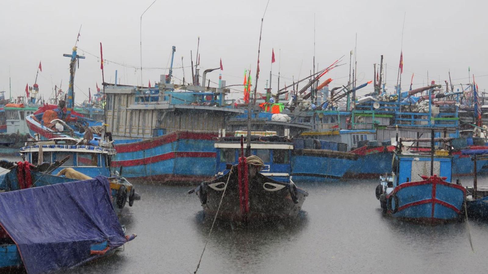 Miền Trung sẵn sàng đối phó áp thấp nhiệt đới và đợt mưa lũ mới