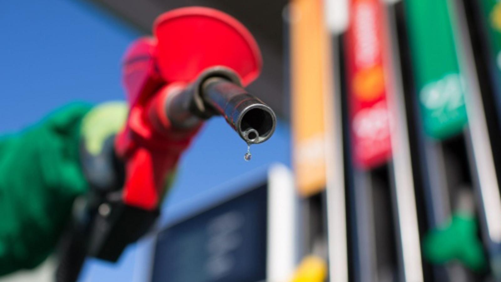 Dự báo giảm tăng trưởng nhu cầu dầu toàn cầu