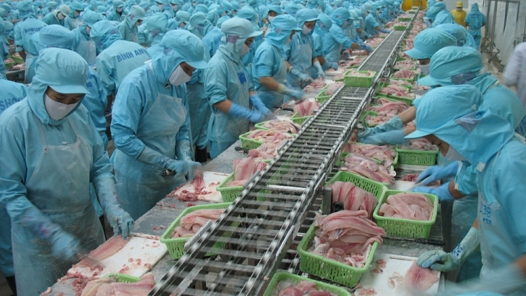 China, US make up more than 50% of export value for Vietnamese tra fish