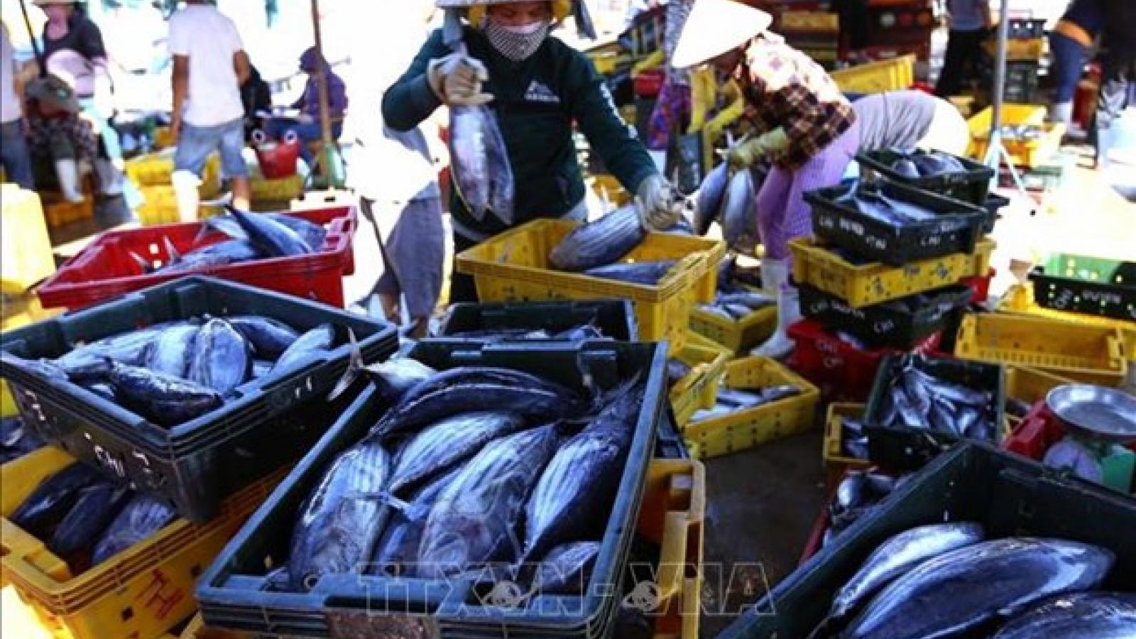 Workshop seeks ways to promote tuna exports to EU