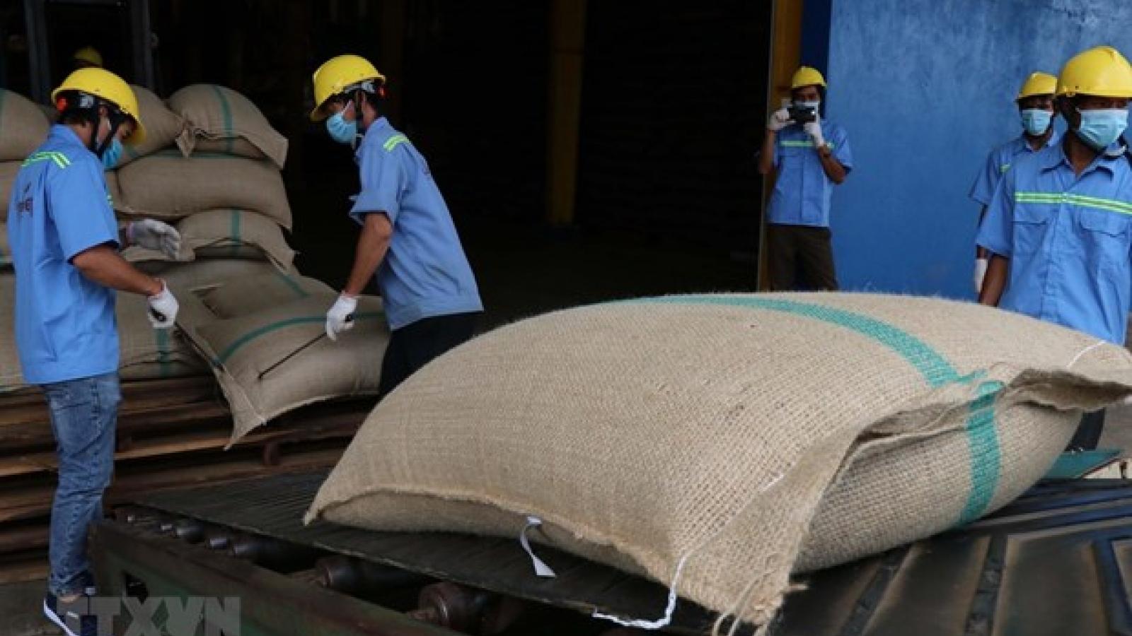 Vietnam, Algeria boost online trade amid COVID-19