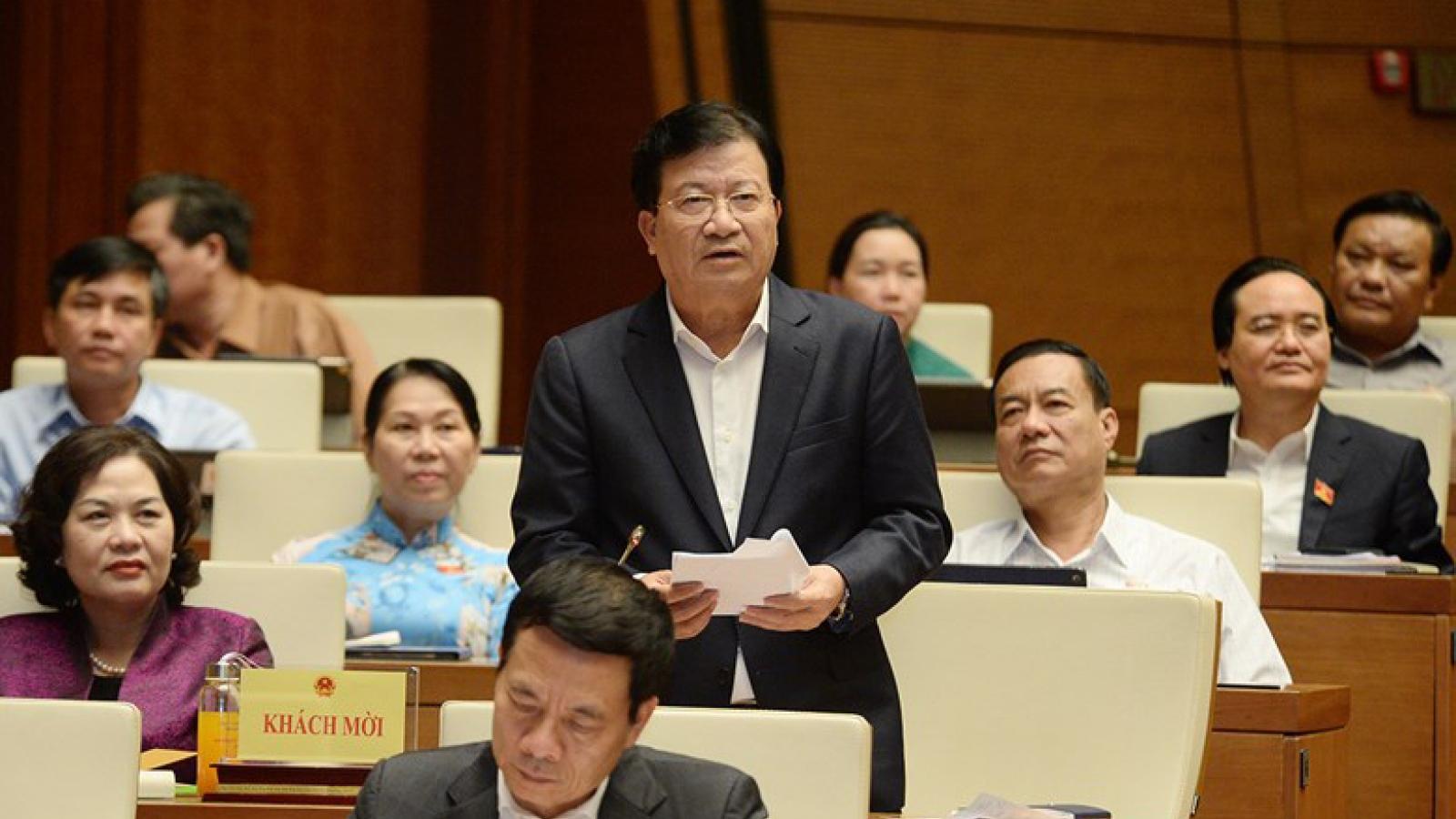 """Phó Thủ tướng Trịnh Đình Dũng: """"Phá rừng lấy gỗ còn xảy ra ở nhiều nơi"""""""