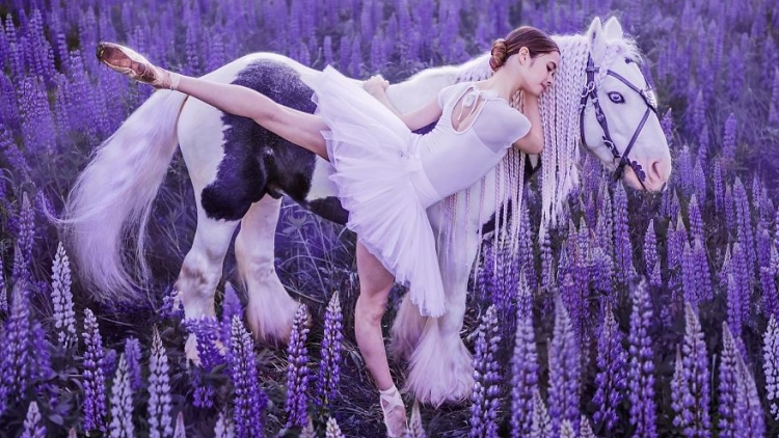 Sững sờ ngắm vũ điệu của con người hoà vào vẻ đẹp của thiên nhiên