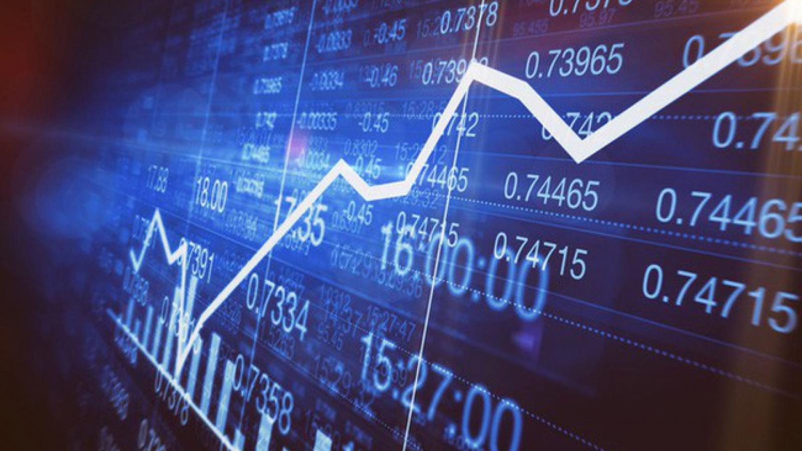 Lập sàn giao dịch tài chính đa cấp để chiếm đoạt tài sản