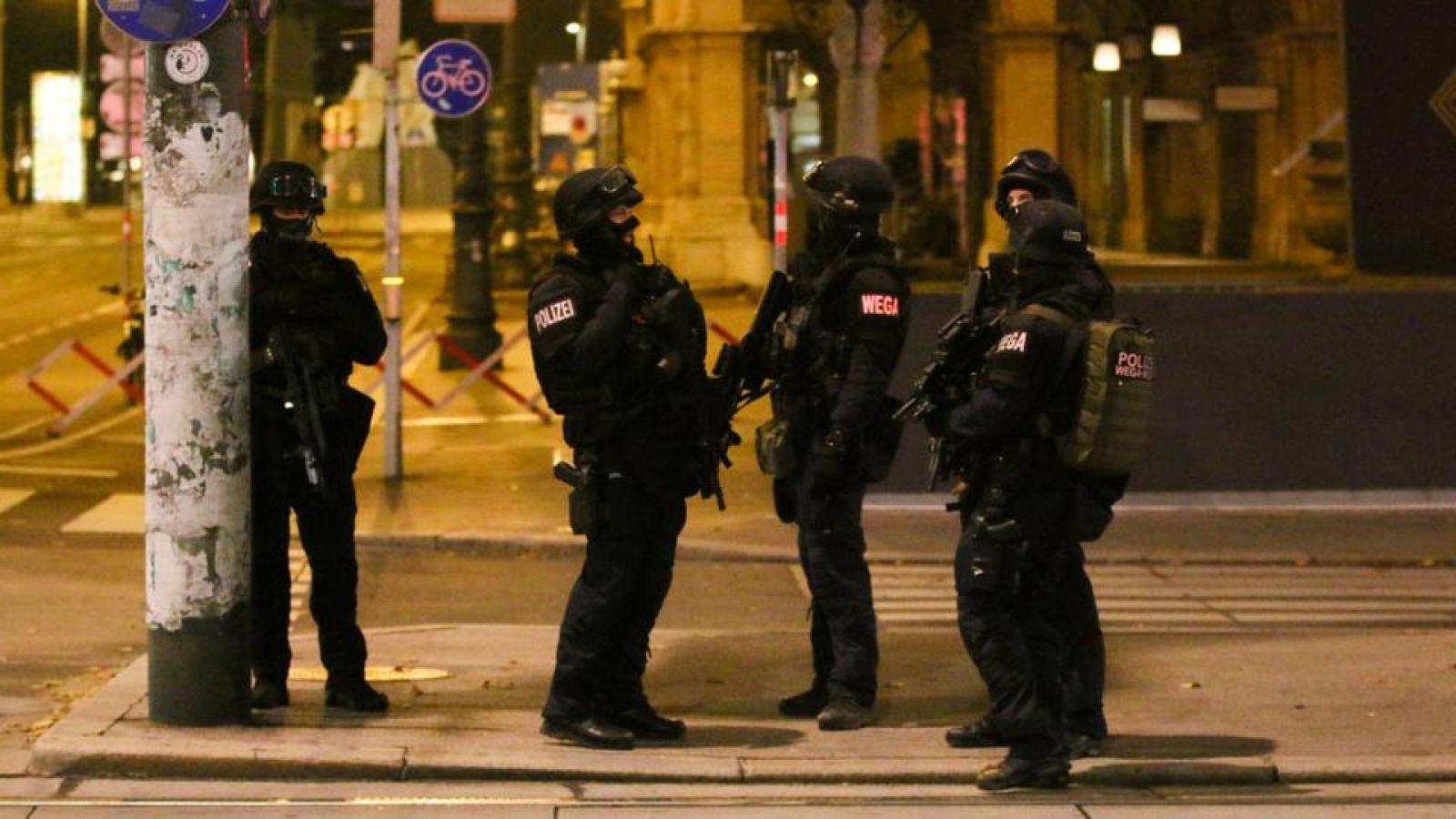 Áo đóng cửa hai nhà thờ Hồi giáo ở Vienna có liên quan đến đối tượng khủng bố
