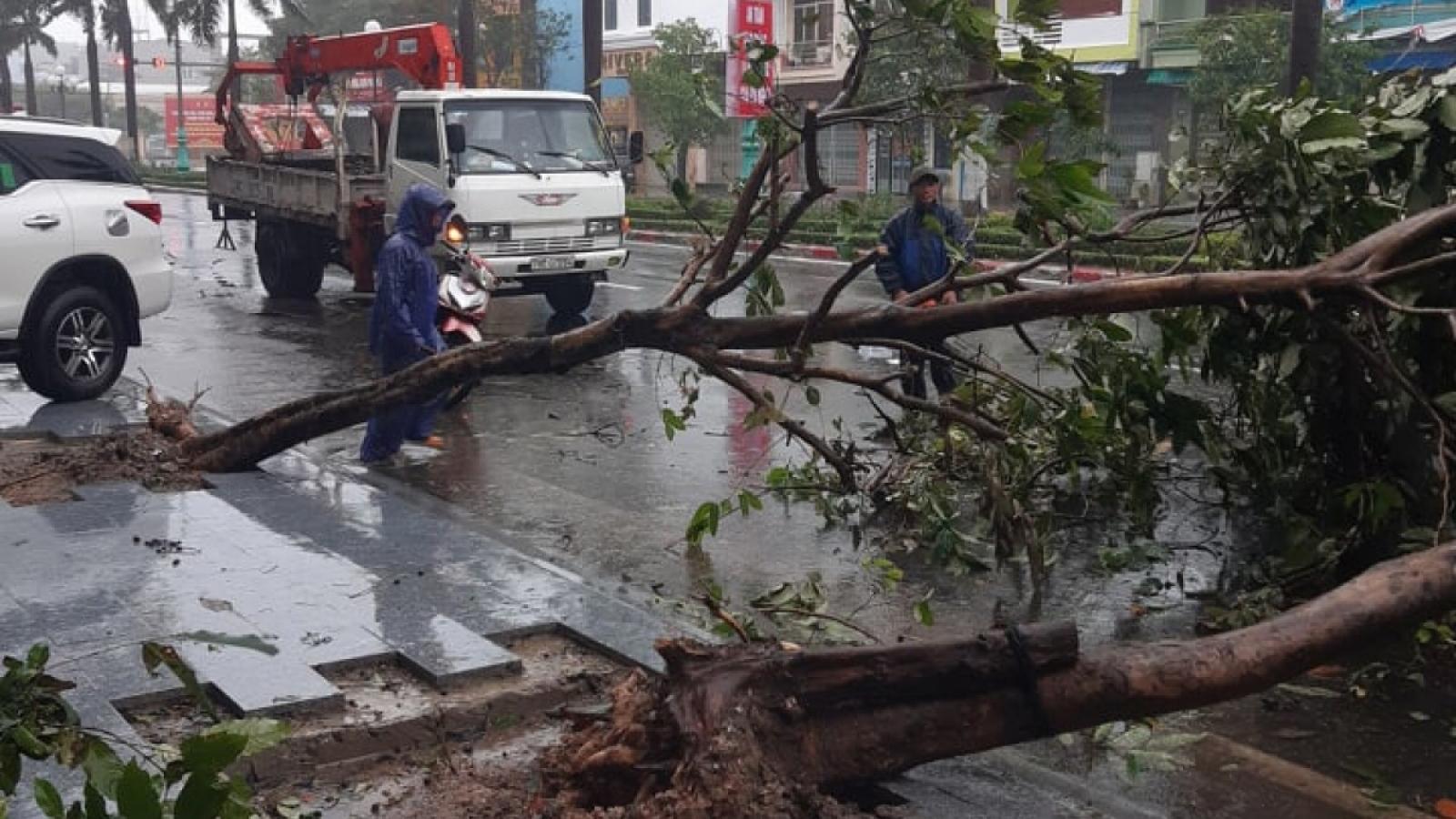 Storm Etau hits Phu Yen, Khanh Hoa with heavy rain and strong winds