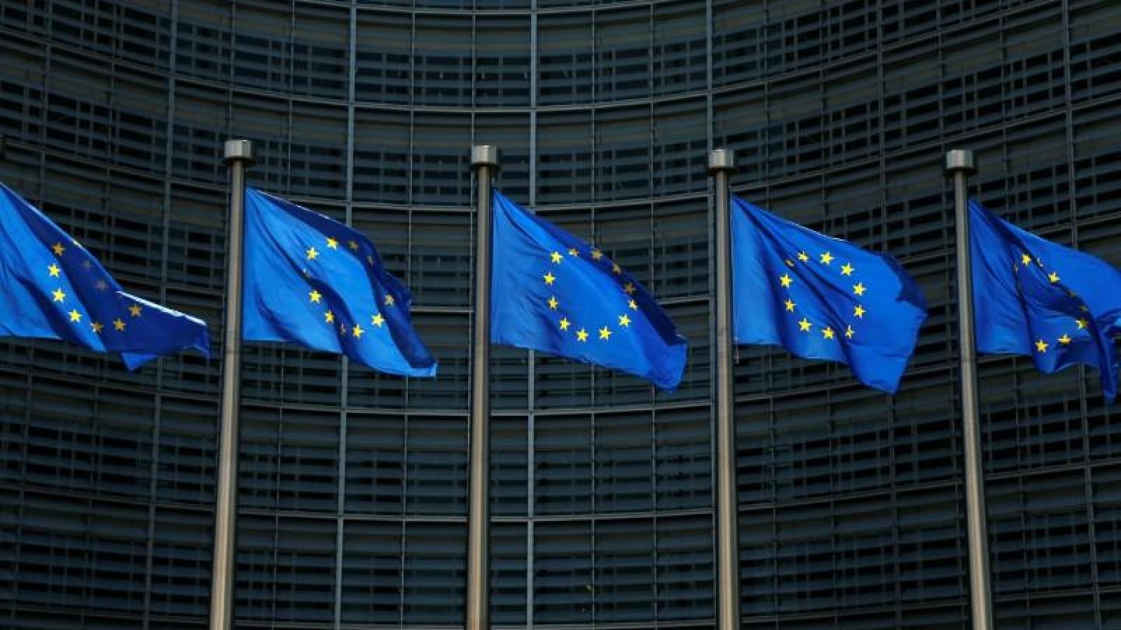 Châu Âu siết chặt kiểm soát biên giới vì lo ngại khủng bố