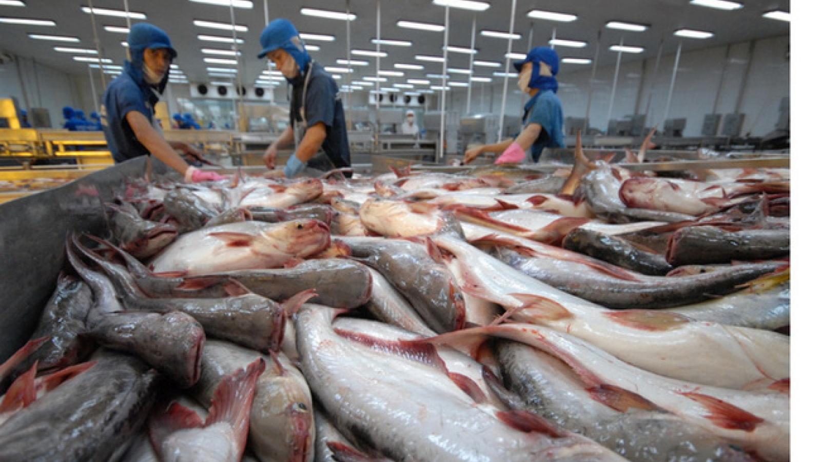 Thủy sản chiếm thế mạnh trong cơ cấu ngoại tệ xuất khẩu của Cần Thơ